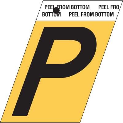 Hy-Ko Aluminum 1.5 In. Self-Adhesive Letter, P